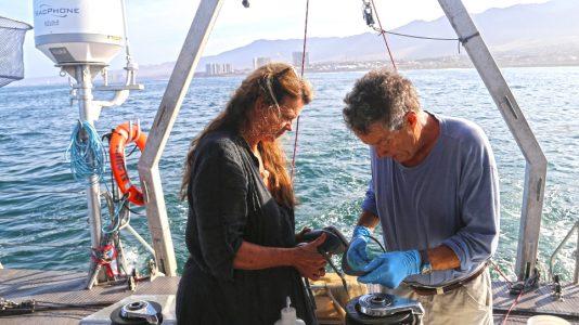Tenger Biologusok Szemetsziget Csendes Ocean 2.5Millio Negyzetkilometer Vitorlazas HAJOZASHU